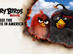 "VIDEO: Filmul ""Angry Birds"", in fruntea box office-ului nord american"